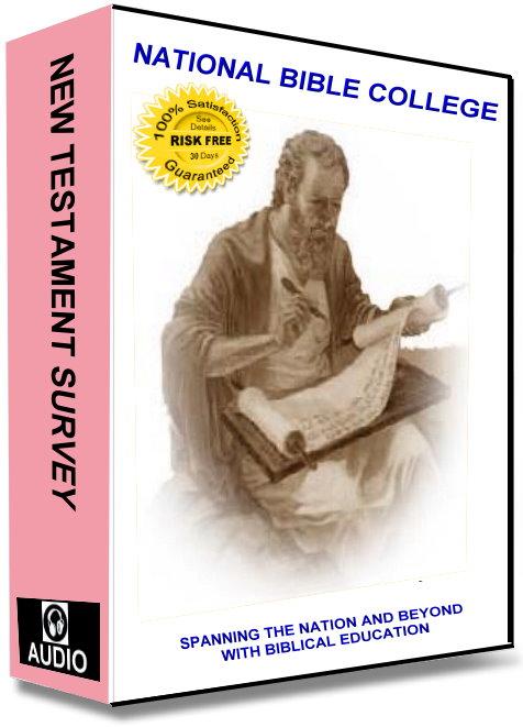 New Testament Survey Audio Course